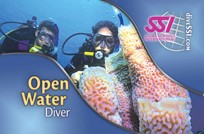 scuba diving instruction